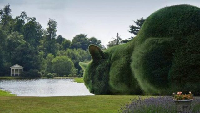 topiary_cats
