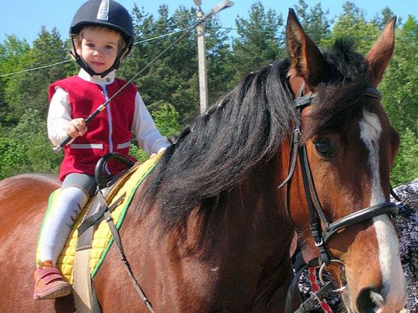 кінь з дитиною