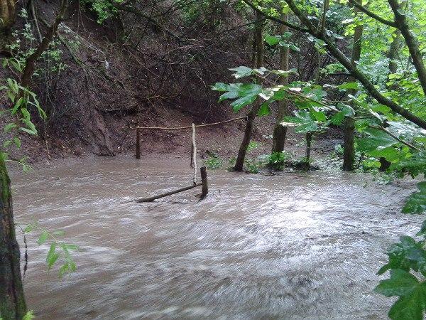 річка в тернополі3