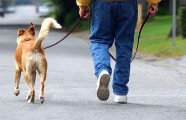 человек-с-собакой-7