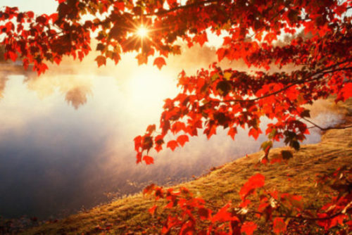 осінь1
