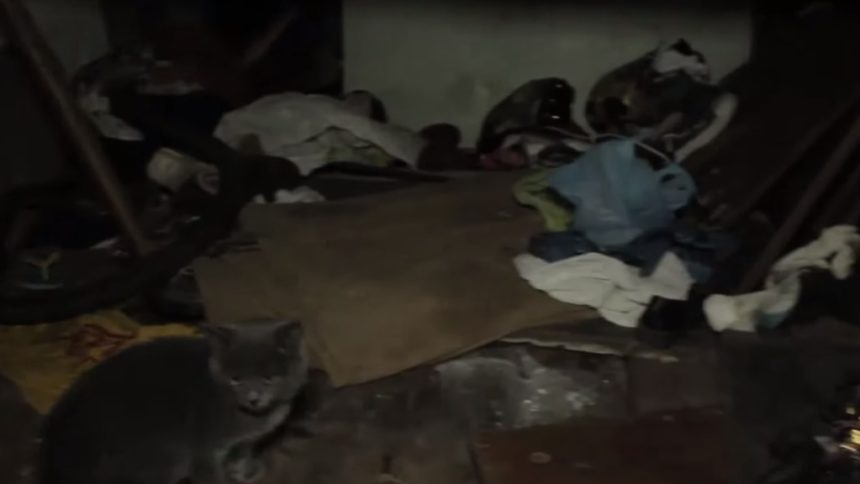 """""""Діти-мауглі"""": у центрі Полтави випадково виявили багатодітну родину, котра мешкала в нелюдcьких умовах"""